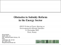 Koplow Subsidy Reform Slides-thumb.png