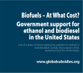 biofuels-at-what-cost-thumb.png